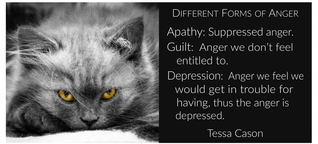 Anger, Apathy, Guilt, Depression…by Tessa Cason