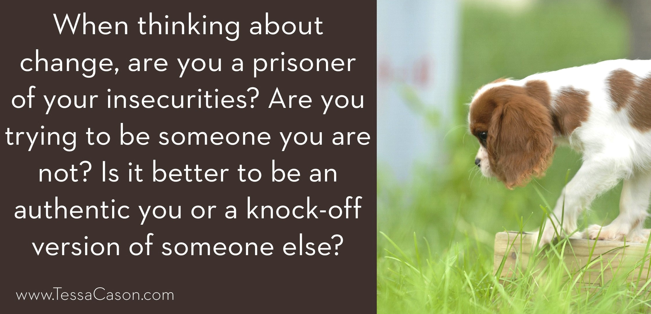 Are you a prisoner of your insecurities